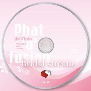 PdF2007